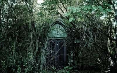 Step into Edinburgh's most haunted places 